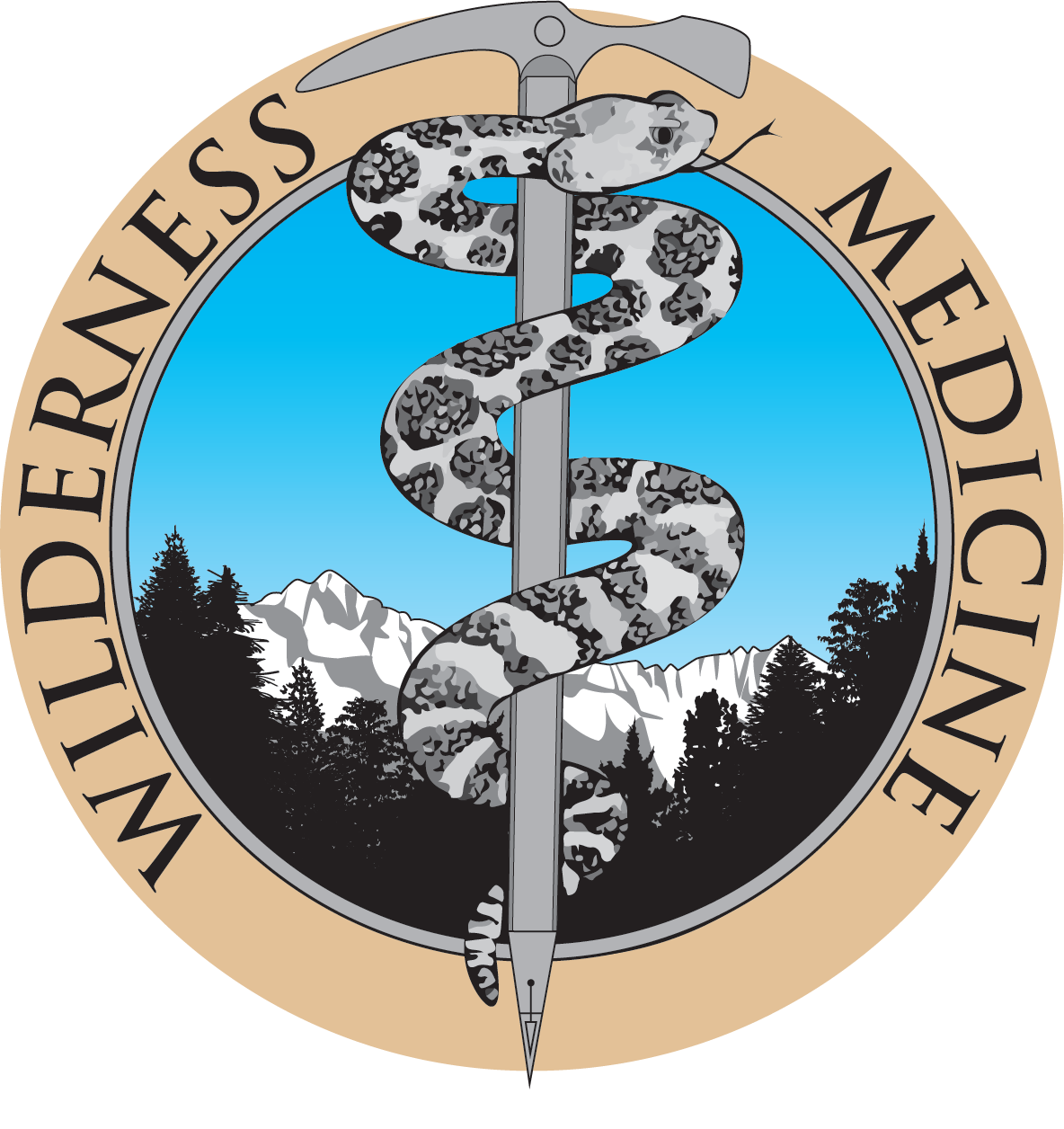 Wilderness Medicine Logo